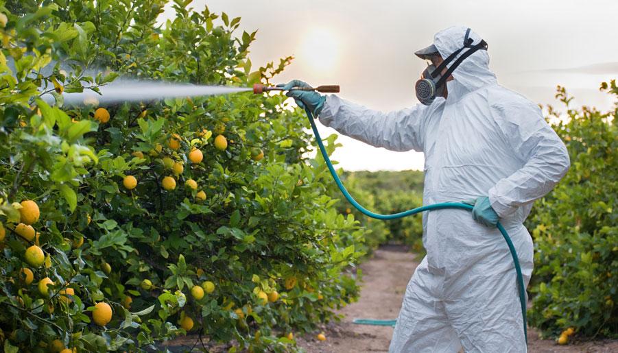 los-que-nos-cuidan-en-la-crisis-del-coronavirus-(ii):-el-sector-agrario