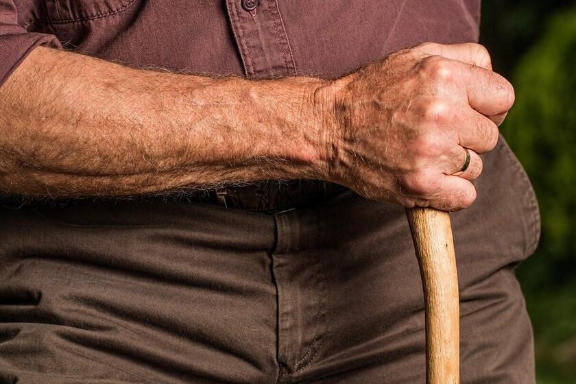 la-reforma-de-las-pensiones-va-por-mal-camino:-pan-para-hoy-y-hambre-para-manana