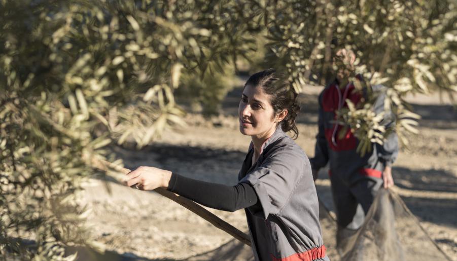 en-el-dia-internacional-de-las-mujeres-rurales:-las-mujeres-espanolas-en-el-sector-agrario